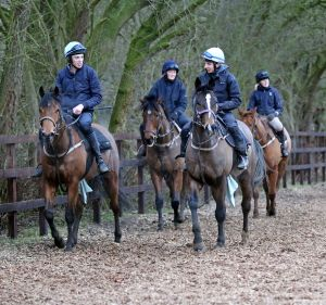 Stable staff required - 5th April 2016