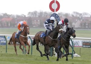 WINNER! Cono Zur wins at Ayr - 27th April 2015