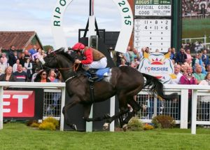 Dubai Dynamo Ripon July 2015
