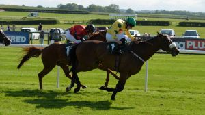WINNER!  Meshardal wins at Catterick - 5th June 2015