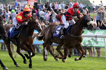 A great day for Froot at York - 14th June 2014