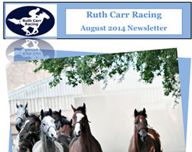 August Newsletter  - 31st July 2014
