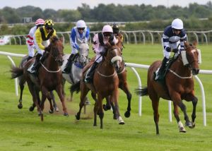 WINNER! Perfect Jimmy at Catterick - 4th August 2015