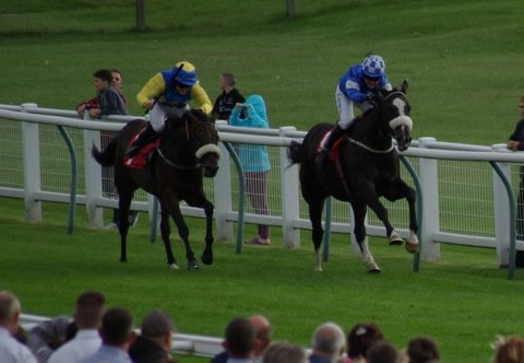 Almuhalab Redcar finishes second August 2015