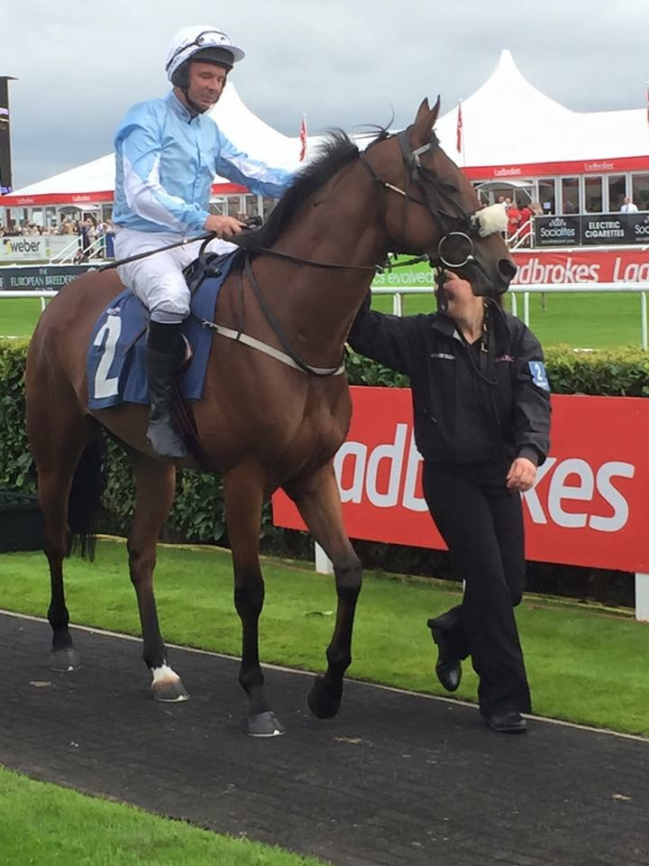 Tory leads Luke on Storm in the parade ring