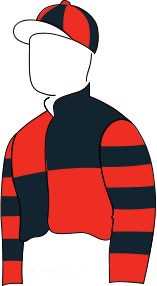 Ower Fly racing colours