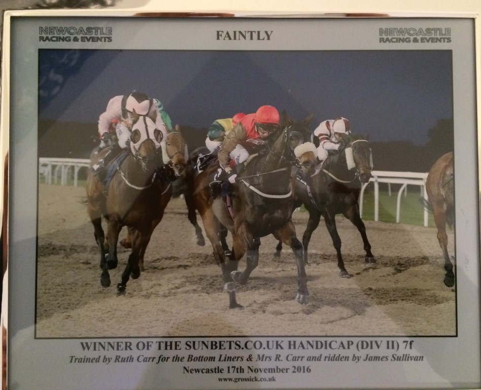 WINNER! Faintly wins again at Newcastle 17th November 2016