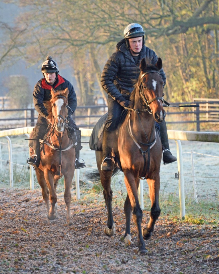 Ryan leads John on recently started yearling