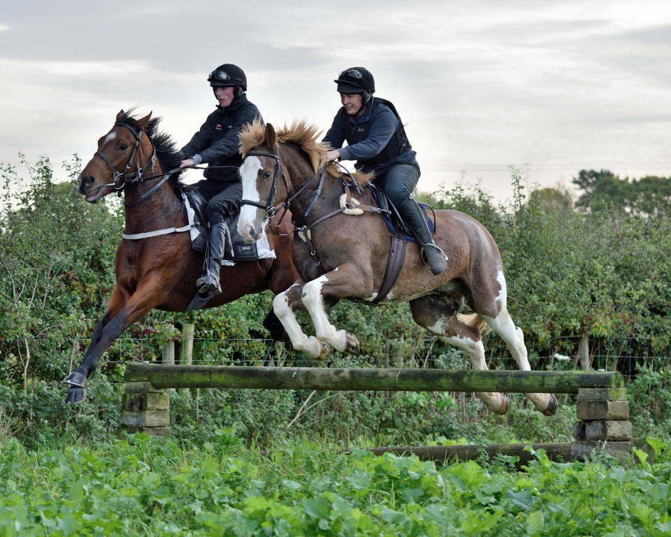 Dyllan Schooling with Troy - 12th October 2017