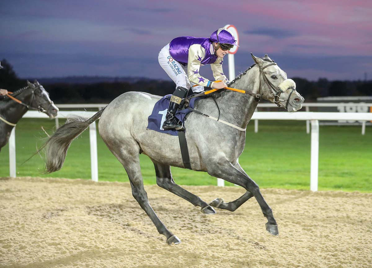 WINNER! Zebulon comes good at Newcastle - 17th October 2018
