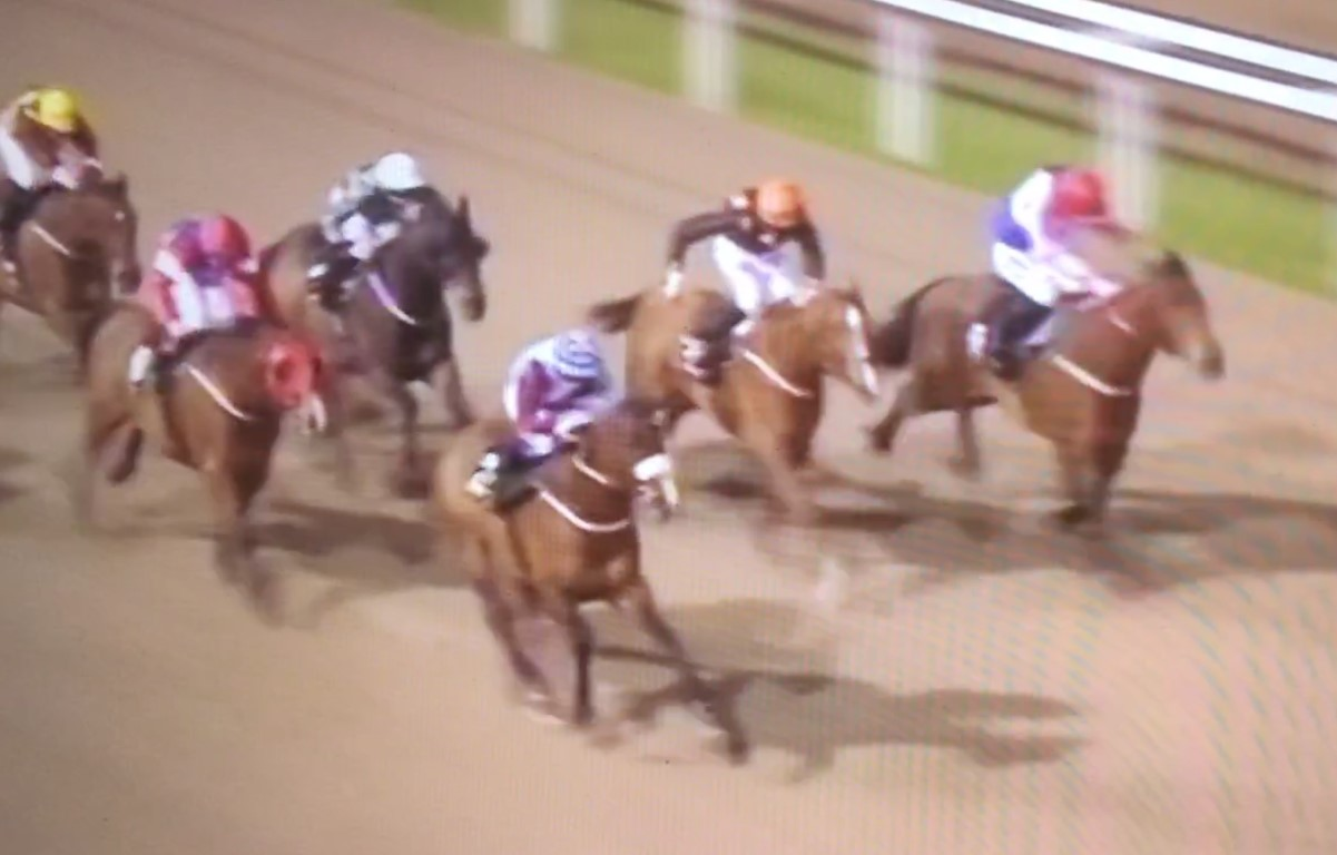 WINNER! Vinnie wins at Chelmsford - 4th April 2019