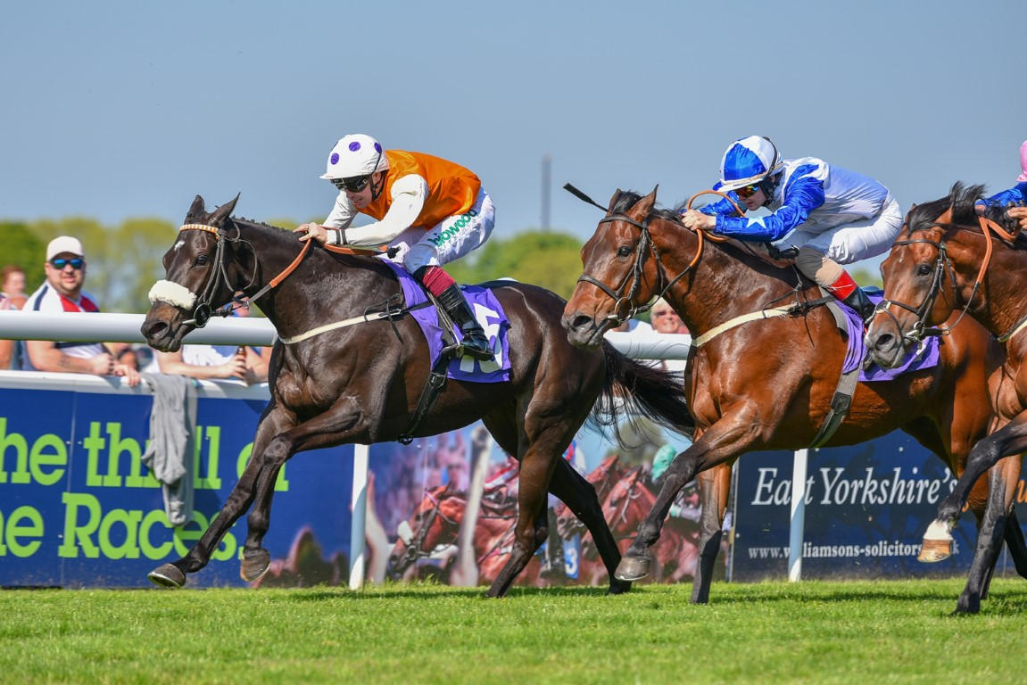 WINNER! Kylie wins again at Beverley - 14th May 2019