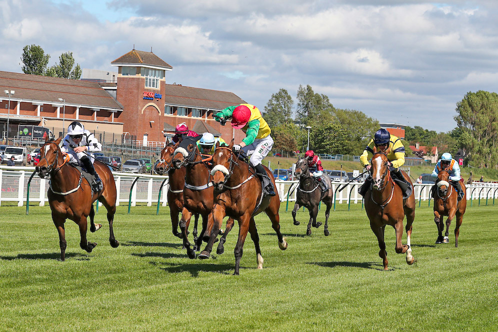 WINNER! Marks' Choice wins at Ayr - 22nd May 2019