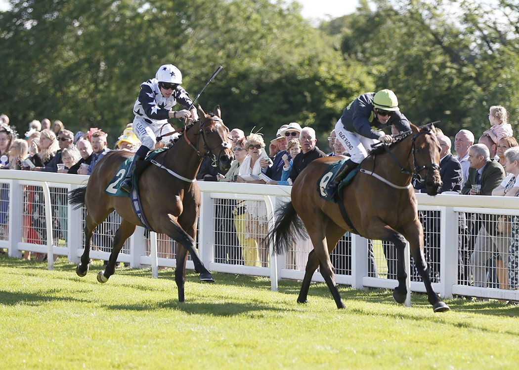 Winner! Cupids Arrow at Ripon - 20th June 2019