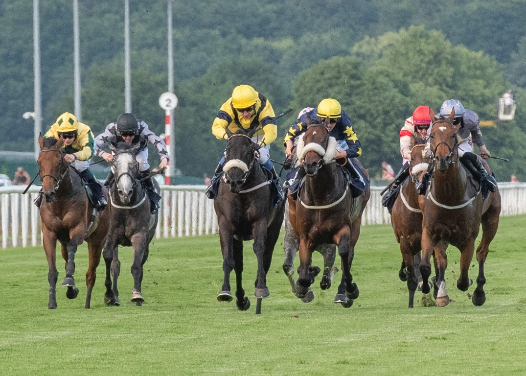 WINNER! Cartmell Cleave at Doncaster - 29th June 2019