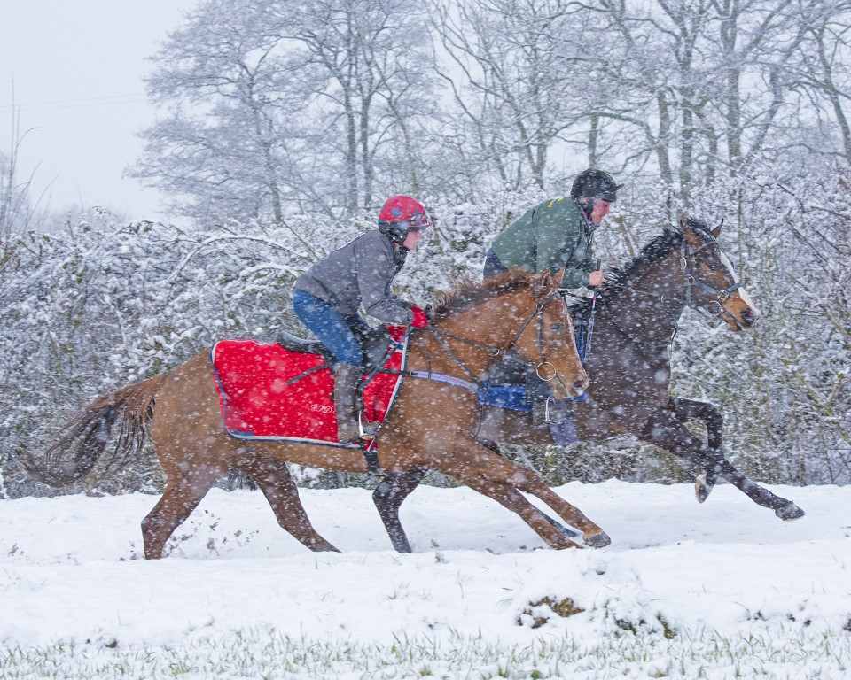 Winter all weather gallops