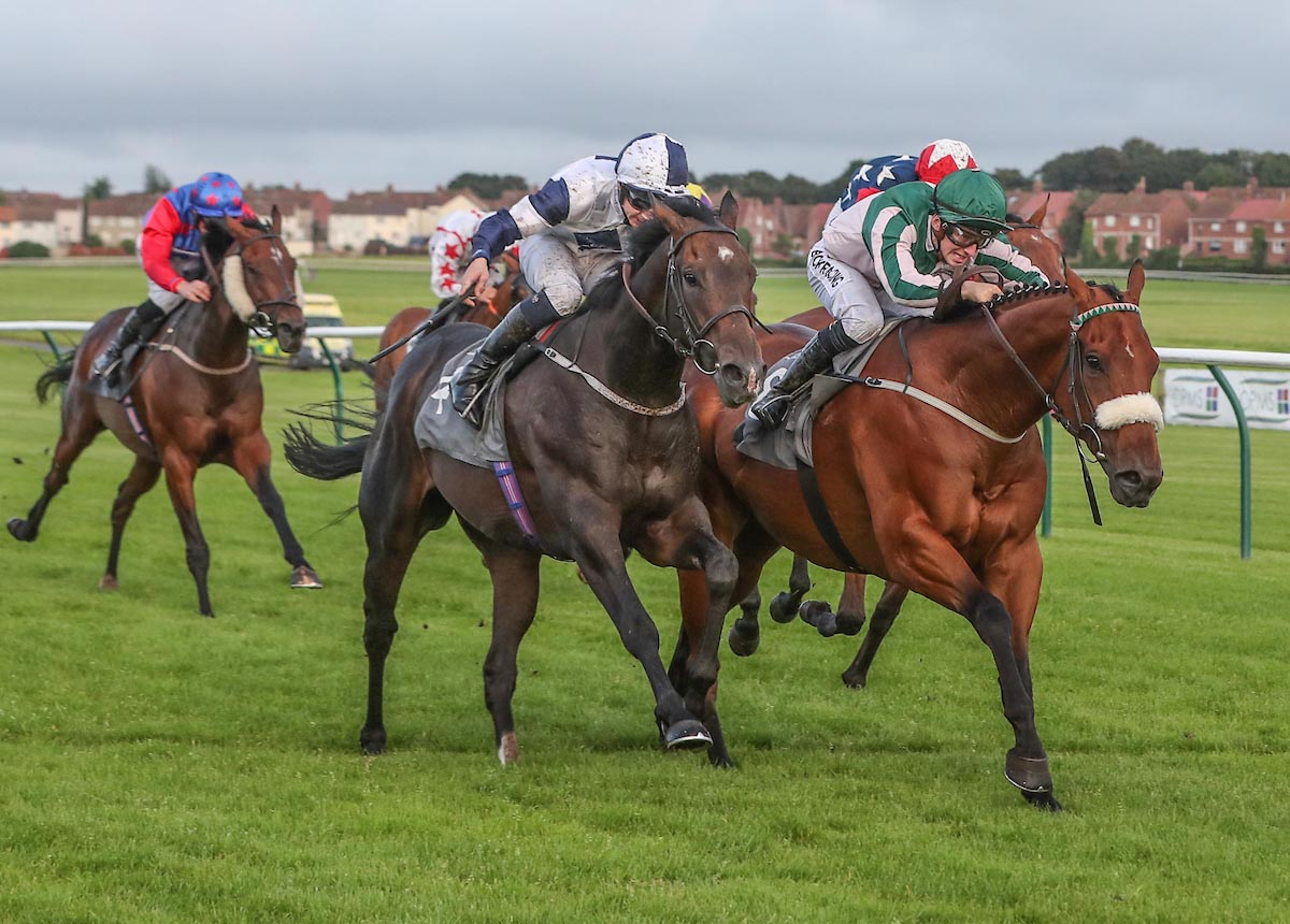 WINNER! Chaplins Bay at Ayr - 10th August 2019