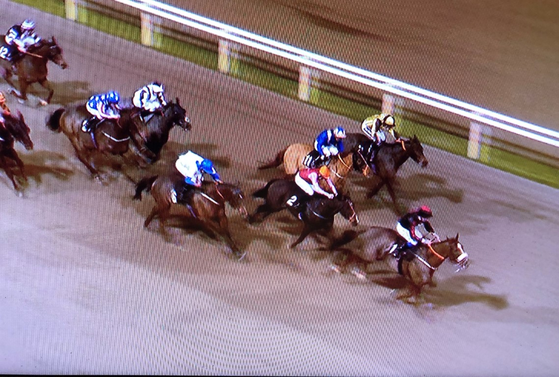 WINNER! Loulin at Chelmsford - 11th December 2019