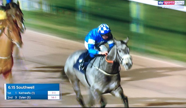 WINNER! Katheefa at Southwell - 3rd January 2020