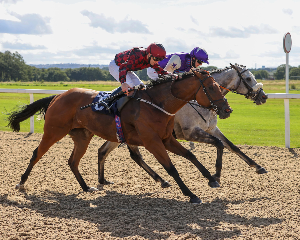 WINNER! Zebulon at Newcastle - 3rd September 2020
