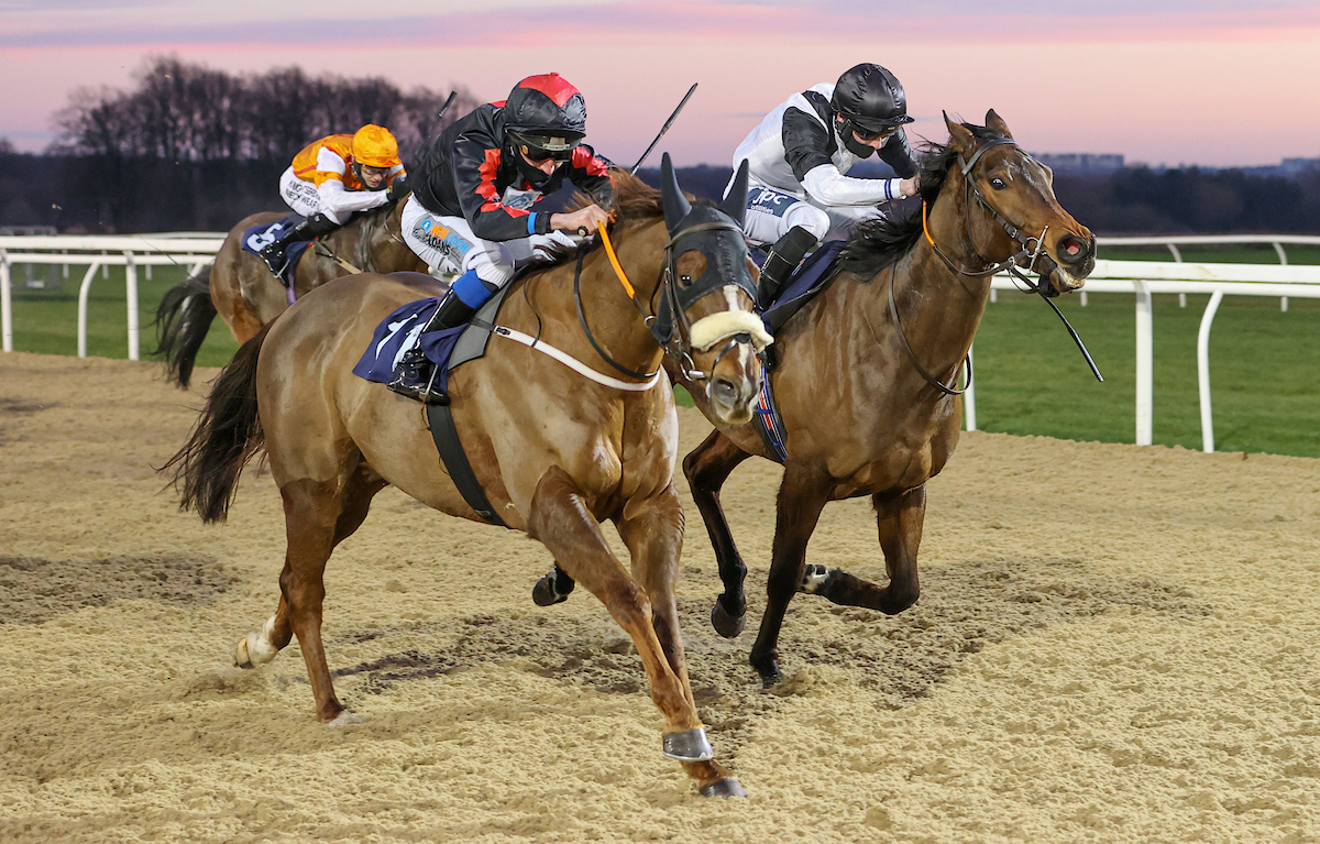 WINNER! Loulin at Newcastle - 31st December 2020