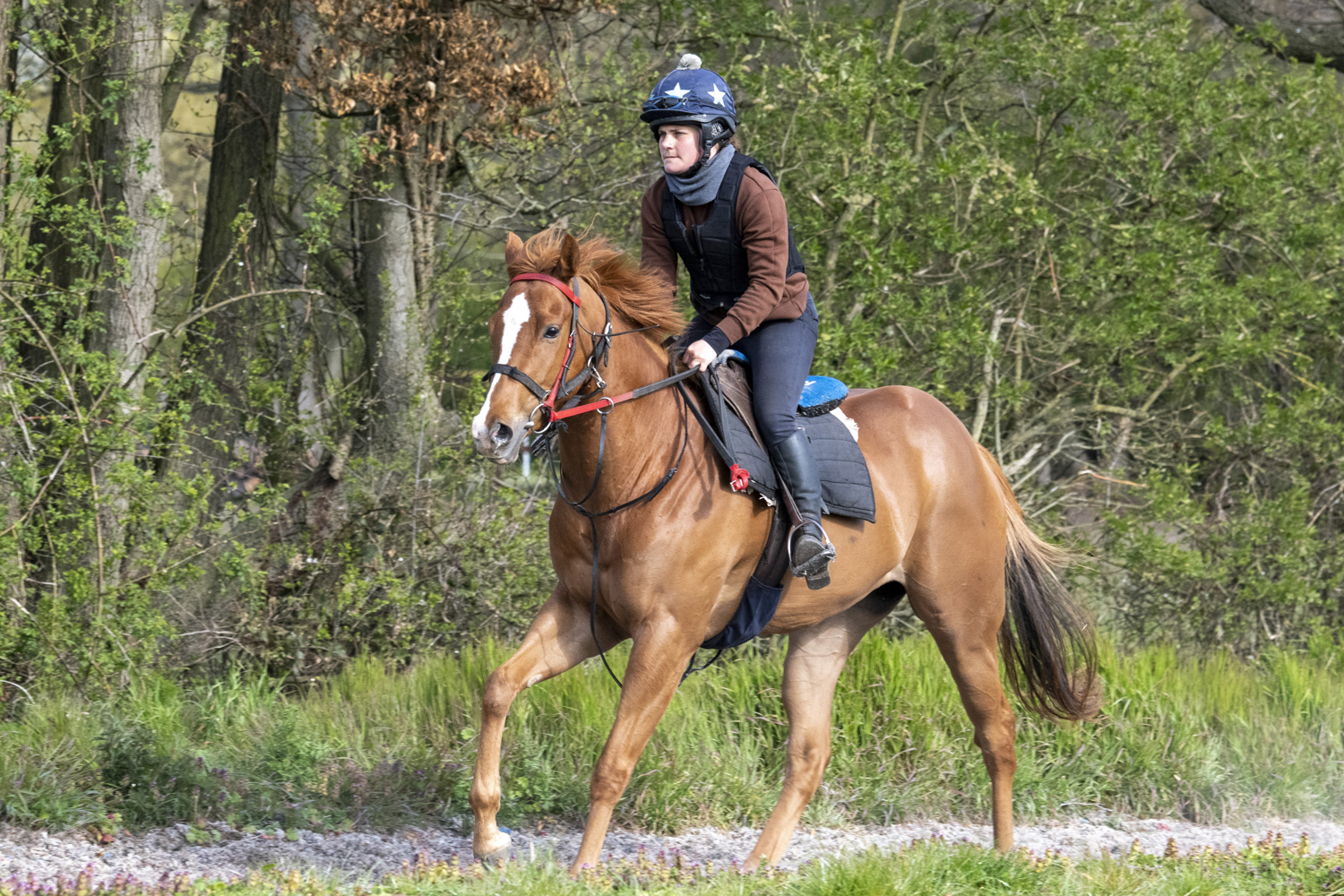 Conny 3 yo x Monsieur Bond